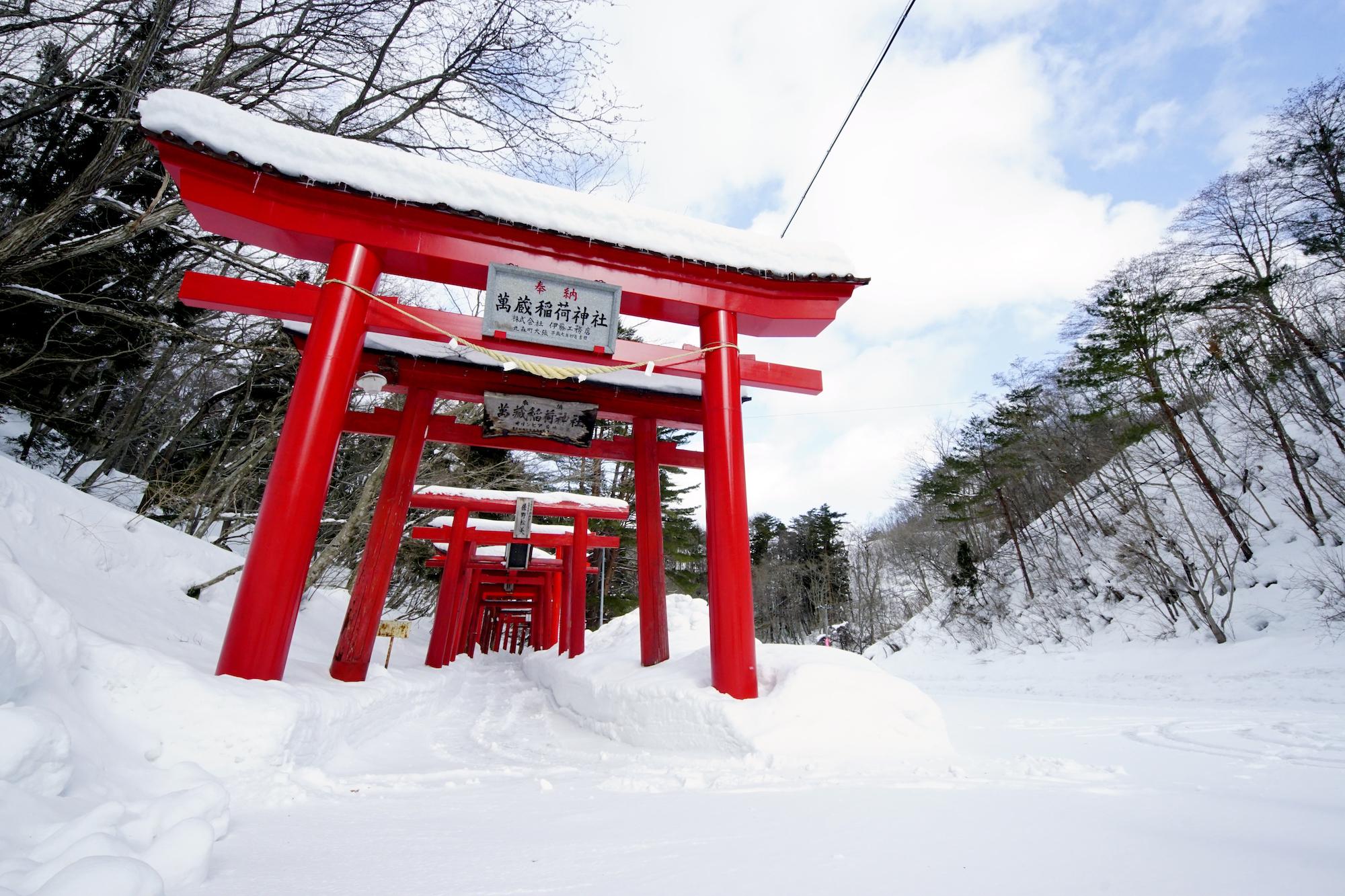【学生ライター】フォトジェニックな赤い鳥居がそびえ立つ「萬蔵稲荷神社」