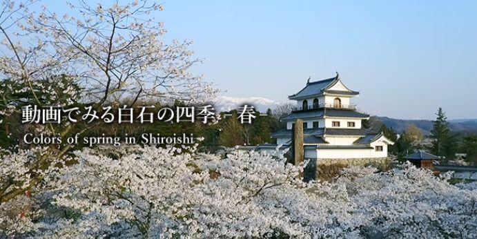 動画でみる白石の四季 -春-